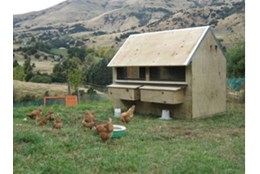 Picture of Villa Chicken Coop