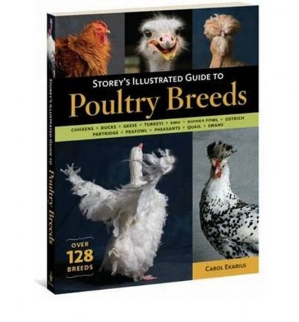 Picture of Storey's Illustrated Guide To Poultry Breeds