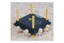Picture of Comfort Chick Heating Plates