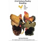 Picture of 21st Century Poultry Breeding