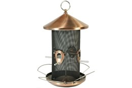 Picture of Wild Bird Bistro Feeder
