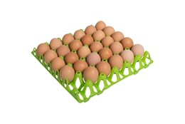 Picture of Plastic Egg Tray (single)